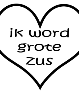 Strijkapplicatie tekst grote zus
