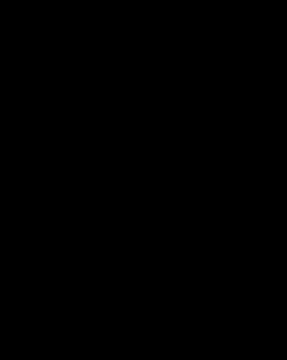 Strijkapplicatie tekst schattig