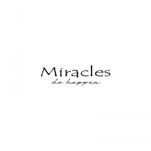 strijkapplicatie miracles do happen